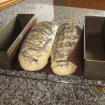 Inden bagning